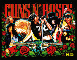 """GUN AND ROSES TRANSLITE"" (DATA EAST)"
